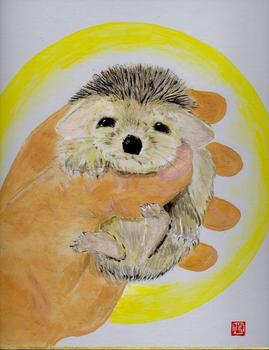 hedgehog_my_paint3.jpg