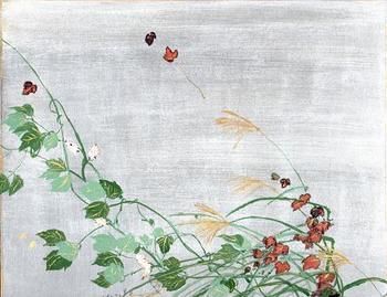 natsuakikusa_left.jpg
